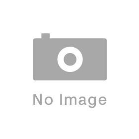 ハルノヒ のジャケット画像